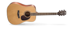 Cort Earth 100 RW Acoustic Guitar