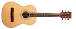Denver 1/2 Size Acoustic Natural