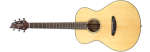Breedlove Discovery Left Handed Concert Acoustic Guitar